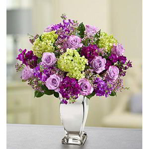 Denville Florist | Lavender Collection