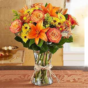 Denville Florist | Fall Collection